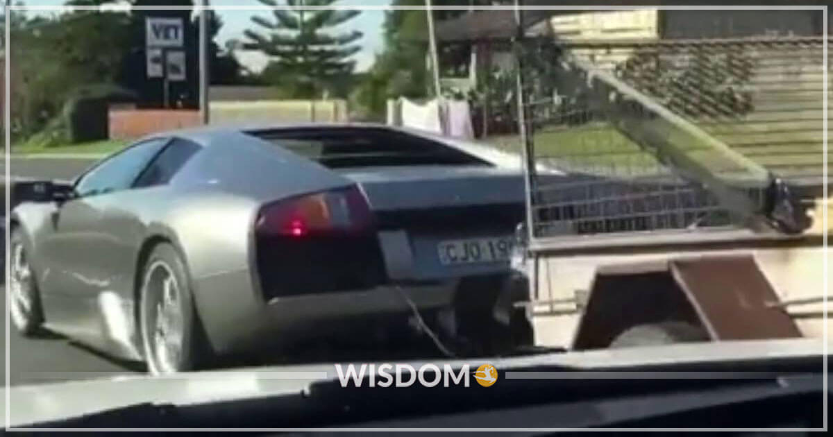 Lamborghini Or Pickup Truck