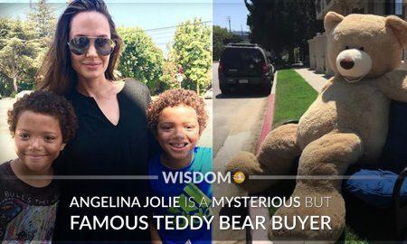 Angelina Jolie Teddy Bear Buyer