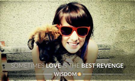 Love Best Revenge