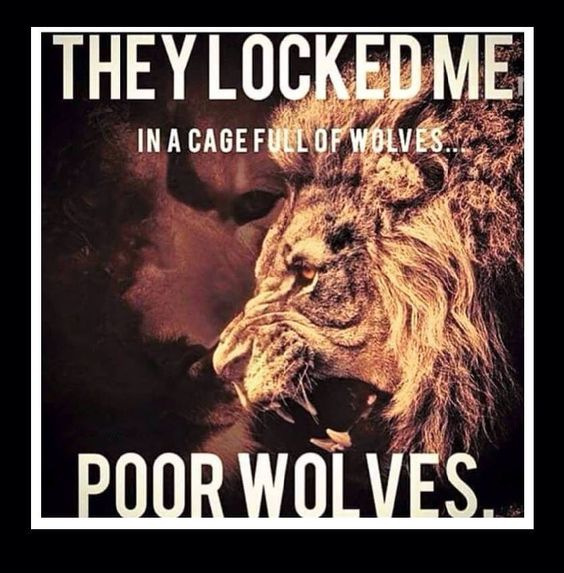 Brave Lion Wolf Quote