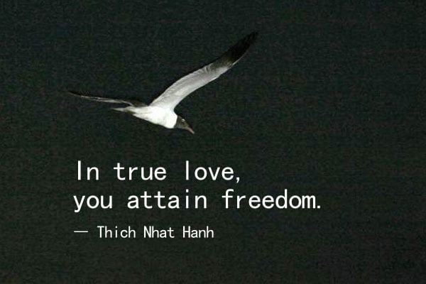 True Love Freedom